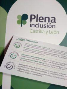 Plena Inclusión recomendaciones